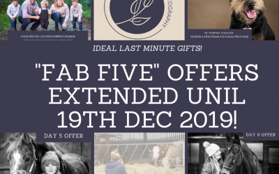 "12 Days of Christmas – Day 12 – ""The Fab five"" offers are extended…"