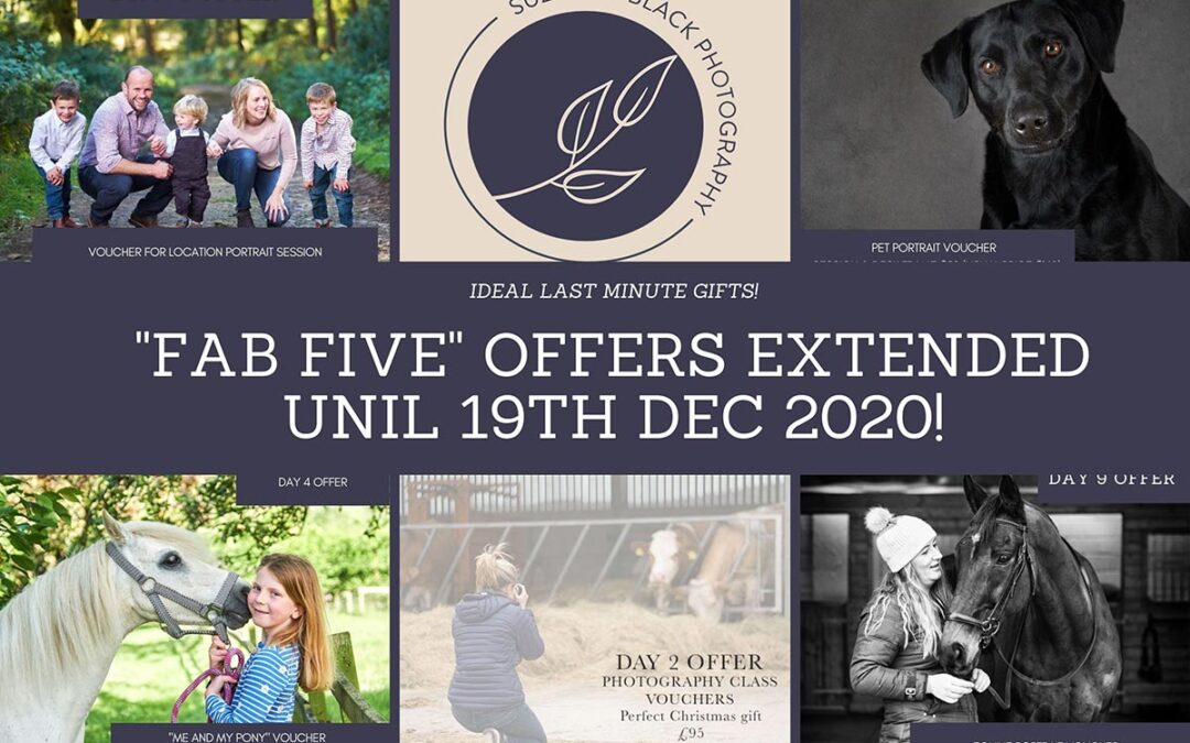 """12 Days of Christmas – Day 12 – """"The Fab five"""" offers are extended…"""